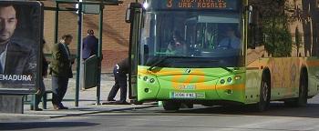 autobuses-real